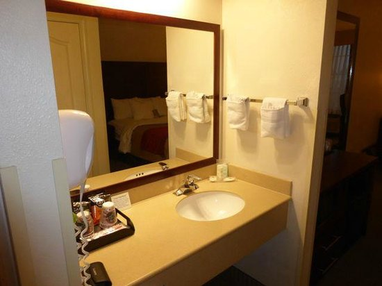 Comfort Inn & Suites: Vanity has a night light. It's in the room, separate from shower