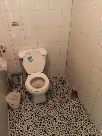 Phi Phi Good View: Wc et douche très salle avec fourmis