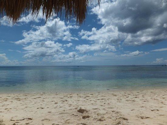Coco Grove Beach Resort : View on the beach