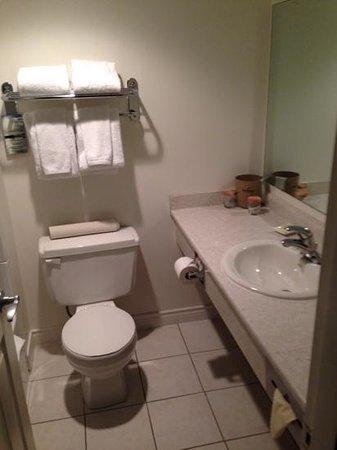 Sandman Hotel Revelstoke: bathroom
