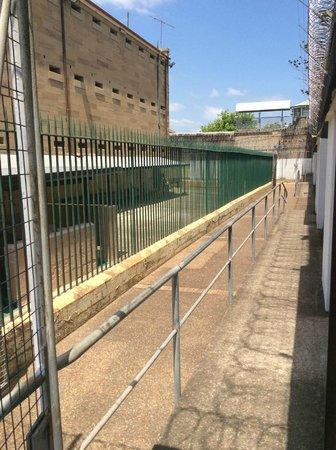 Maitland Gaol: Protection area