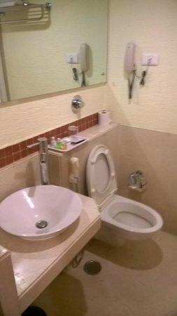Coral Tree: Toilet & sink
