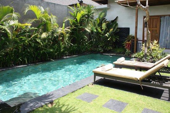Sandi Agung Villa: Private Pool