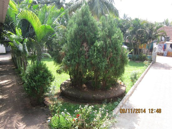 Graciano Cottages: lawn