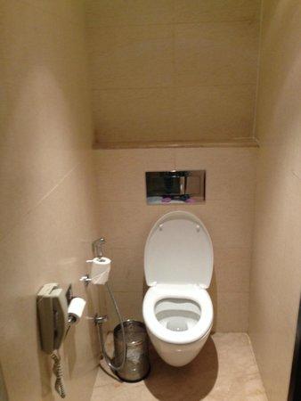 Hotel Royal Orchid, Jaipur: bathroom