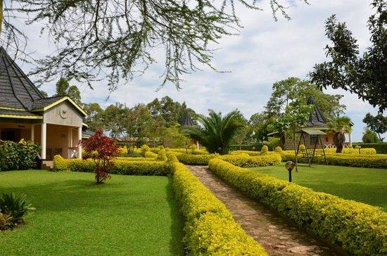 Gisambai, Kenia: Vue sur le jardin