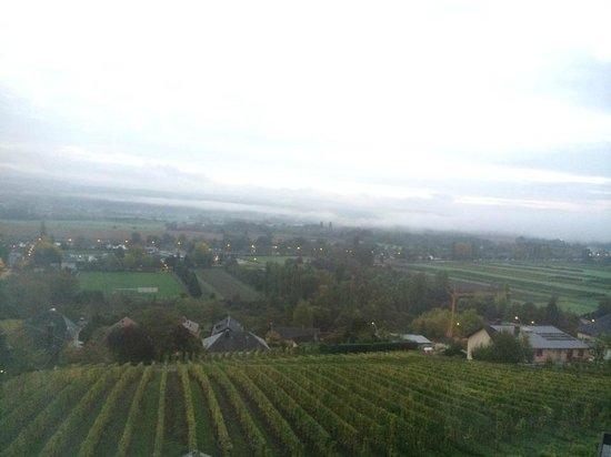 Hotel Des Vignes Restaurant Du Pressoir : View from the room