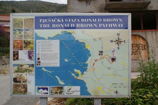 Kort Over Ruten Picture Of Ronald Brown Pathway Cavtat