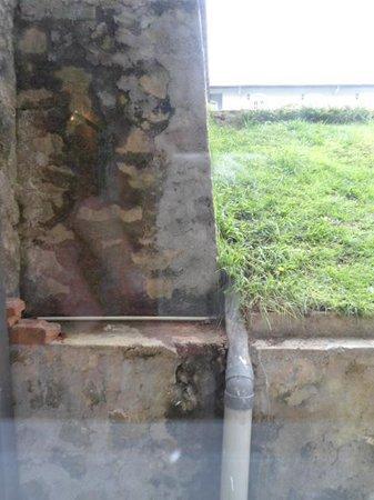 Jetwing St. Andrew's: Blick aus dem Fenster....
