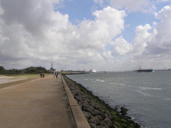 Hoek van Holland beach: Маас