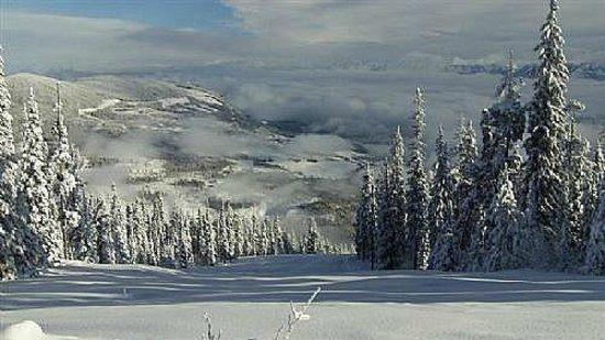 Champagne Powder heaven  Picture of Kimberley Alpine Resort