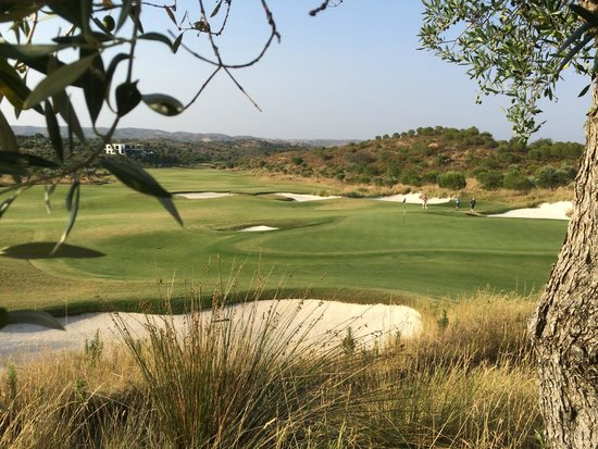 Monte Rei Golf & Country Club : View from behind 16th green
