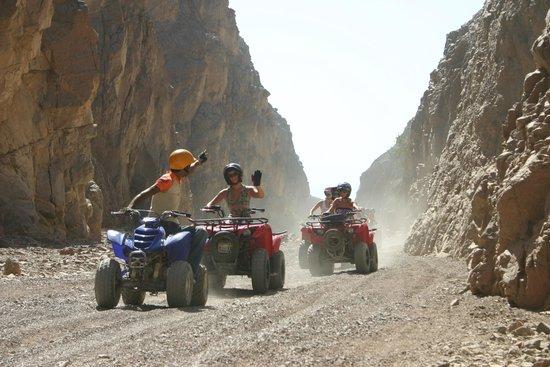 Canyon Motor Safaris : on the go