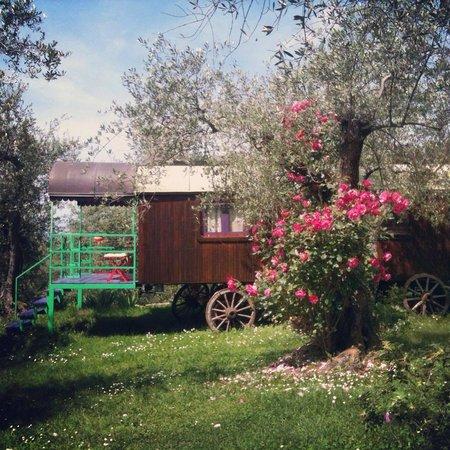 Azienda Agricola Della Mezzaluna
