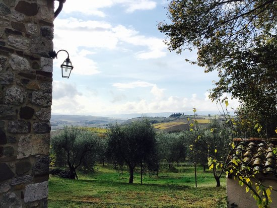 Agriturismo La Canonica: View from the garden