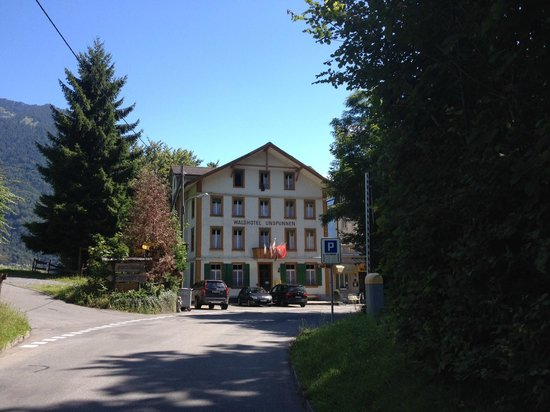 Waldhotel Unspunnen: view from the walk