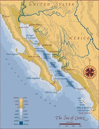 map of area - Picture of Hotel Riu Santa Fe, Cabo San Lucas ...