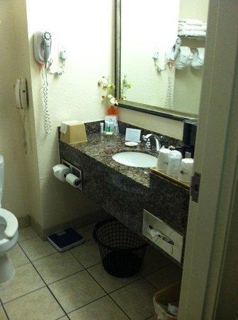 Super 8 Austin/Airport South: Bathroom