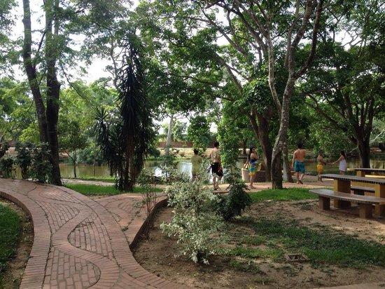 Hotel Rio Selva Resort Santa Cruz: Parque florestal