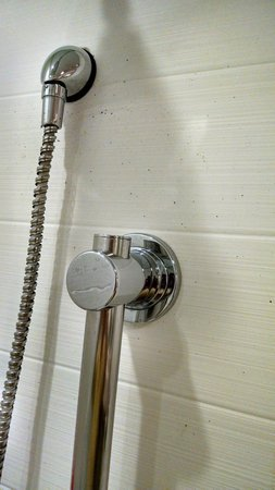 SpringHill Suites Chicago Waukegan/Gurnee: Black mold or what on shower walls