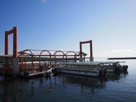 Nakamagawa Pleasure Boat: 風景