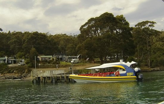 Full Day Bruny Island Tour From Hobart