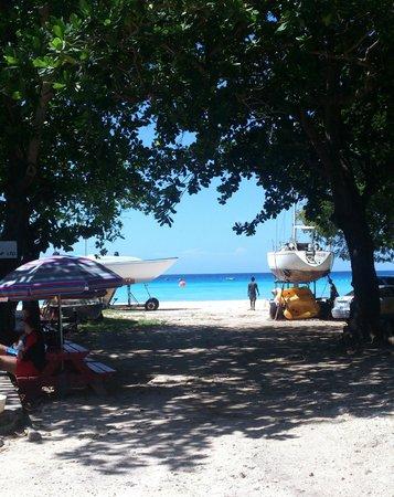 The Dive Shop Ltd.: Caminho para praia na base do The Dive Shop Ltd