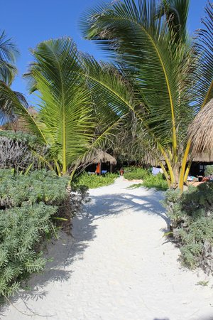 Retiro Maya Villas : Vista das cabanas da praia