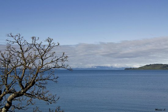 Bay Court Lakefront Motel: View from front of motel, beautiful Lake Taupo
