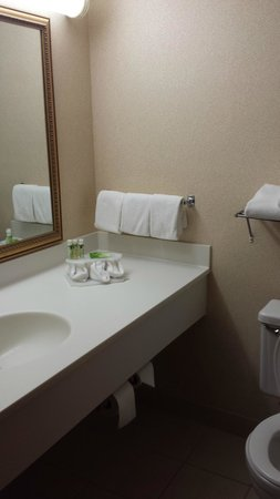 Holiday Inn Express Chicago Downers Grove: Pic 1