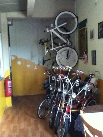 Ringo's Foyer Guest House: cycling