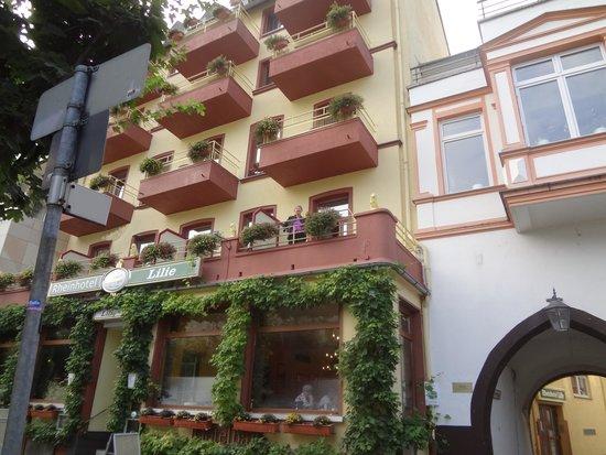 Rheinhotel Lilie : Street view of hotel