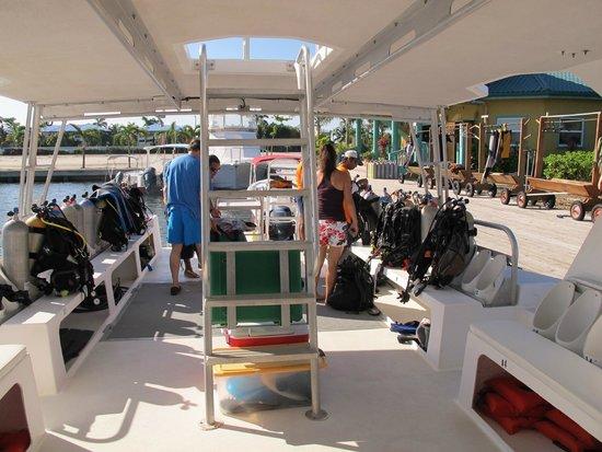 Splash Dive Shop: Interior