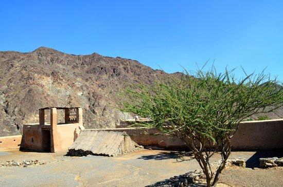 Al Hayl Castle: Al Hayl