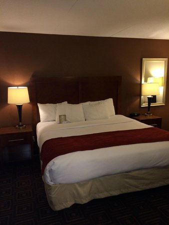 Comfort Inn: King room