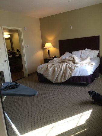La Quinta Inn & Suites Fresno Northwest: Large bedroom
