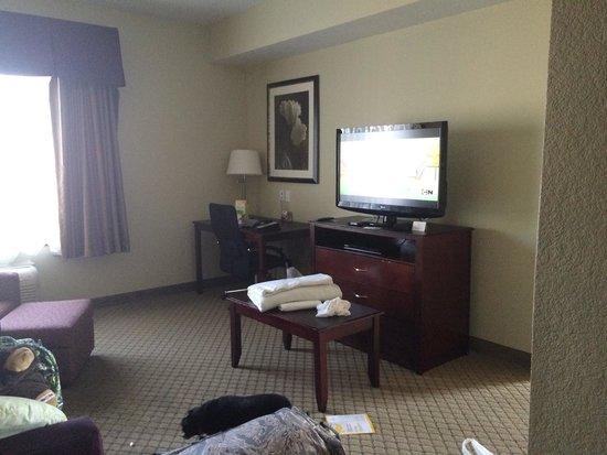 La Quinta Inn & Suites Fresno Northwest : Living room