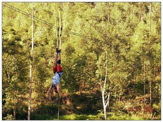 Floresta Park Adventure