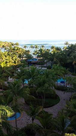 Hyatt Residence Club Dorado, Hacienda del Mar : Great View