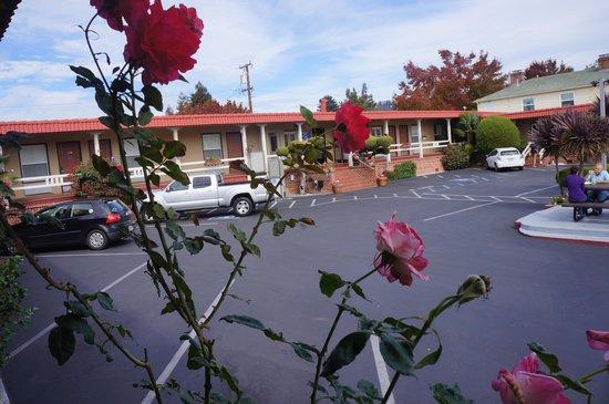 Berkeley Rodeway Inn : Entrada 1