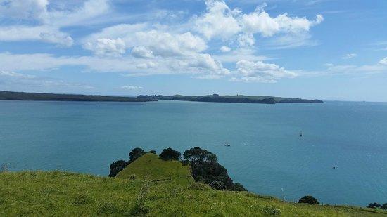Auckland Sea Kayaks: The View from Motukorea Summit