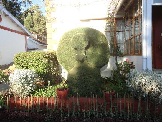 Kluney Manor: Flora