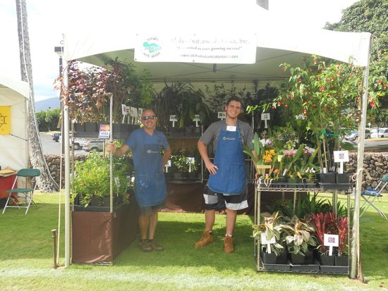 Maui Arts & Cultural Center : aloha botanicals, maui.....great plants