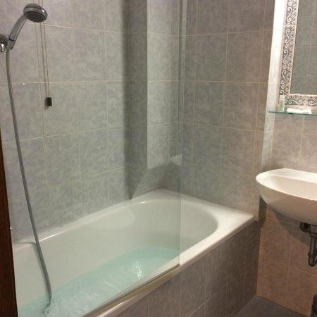 Hotel Delta Florence: バスルーム