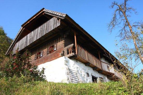 Budnar's Museum House