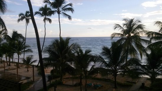 VIK Hotel Cayena Beach: View to the see