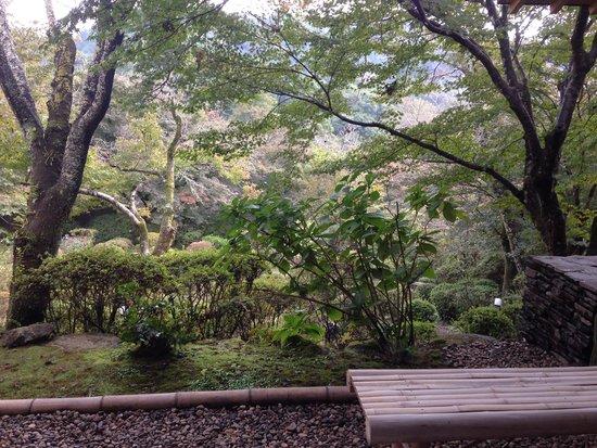 Onyado Chikurintei : 部屋から見えるお庭