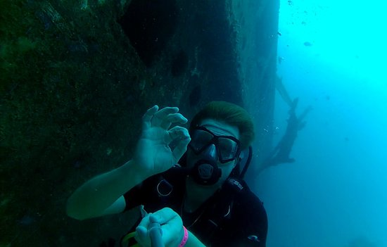 Diving Dominican Republic: @ near the wreck
