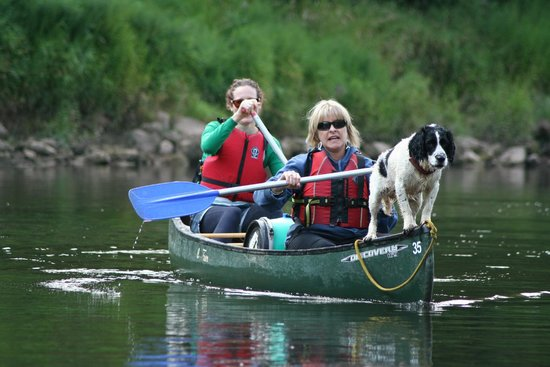 Symonds Yat, UK: Every canoe should have a dog!