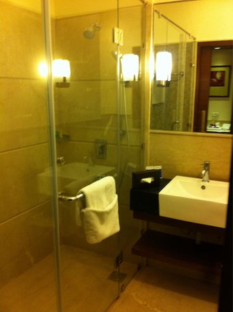 The Muse Sarovar Portico, Nehru Place: The bathroom .